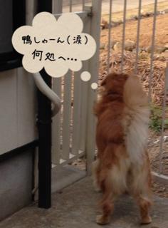 image-20131020150052.png